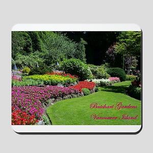 Flowers 2 BG, VI Mousepad