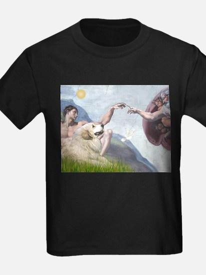 810-Creation-GrPyr2 T-Shirt
