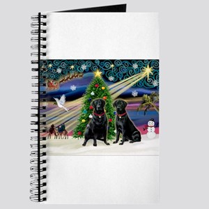 Xmas Magic & Lab PR Journal