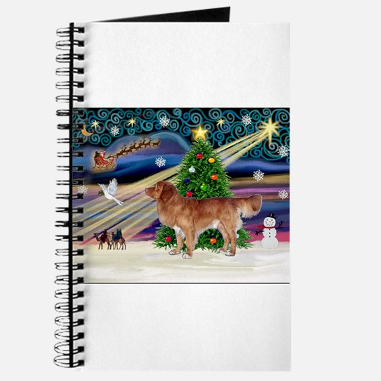 XmasStar/Nova Scotia dog Journal