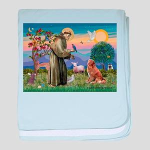 St Francis & Nova Scotia baby blanket