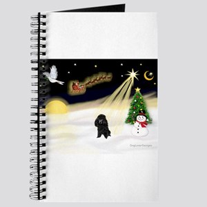 Night Flight/Poodle (Min) Journal