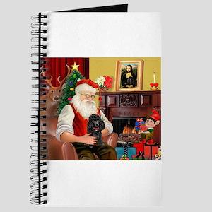 Santa Min Poodle (b) Journal