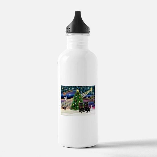 Xmas Magic & 2 Black Pugs Water Bottle
