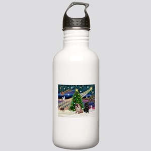 X Mas Magic & Pug Pair Stainless Water Bottle 1.0L