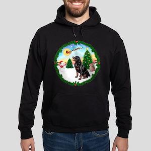 Take Off1/Rottweiler #6 Hoodie (dark)