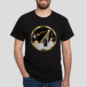 Night Flight/Schipperke Dark T-Shirt