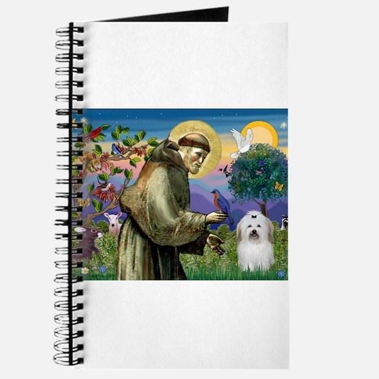St Francis / Coton de Tulear Journal