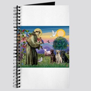 St Francis & Lab Trio Journal