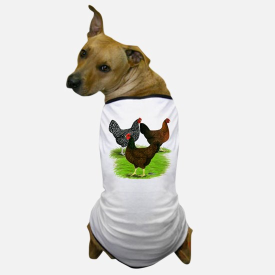 Dark Brown Egg Hens Dog T-Shirt