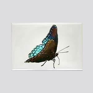 Red Spotted Purple Butterfly Rectangle Magnet