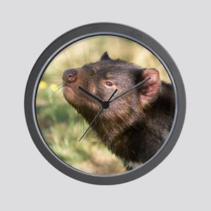 Tasmanian Devil Wall Clock