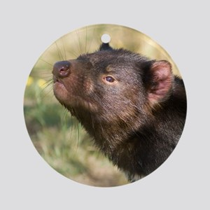 Tasmanian Devil Ornament (Round)