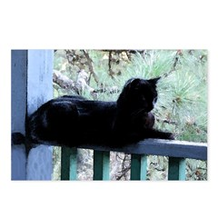 Black Cat on the Porch Postcards (Package of 8)