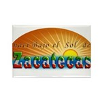 Naci en Zacatecas Rectangle Magnet (10 pack)