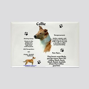 Collie 2 Rectangle Magnet
