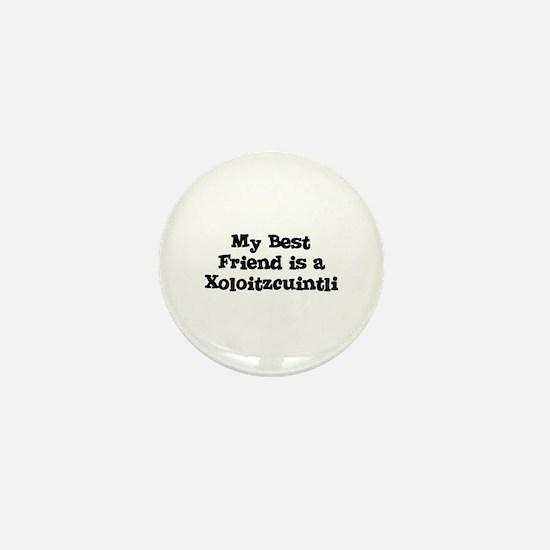 My Best Friend is a Xoloitzcu Mini Button