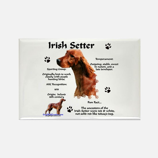 Irish Setter 1 Rectangle Magnet