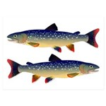 Dolly Varden Trout 5x7 Flat Cards (Set of 10)