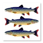 Dolly Varden Trout Photo Wall Tile