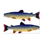Dolly Varden Trout Posters