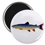 Dolly Varden Trout Magnets