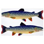Dolly Varden Trout 4'x6' Area Rug
