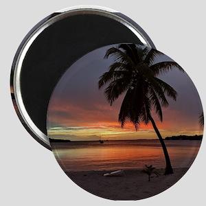 Sunset Palms Magnets