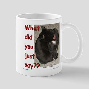What Did You Just Say?? Mug