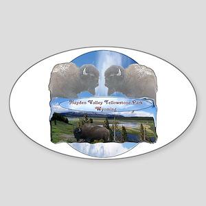 Hayden Valley 1 Sticker (Oval)