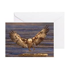 Landing Spot Greeting Card