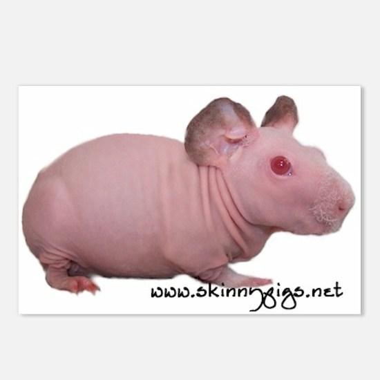 Skinny Pig Postcards (Package of 8)