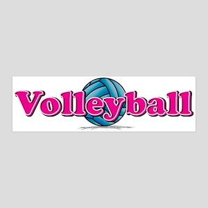 Volleyball 42x14 Wall Peel