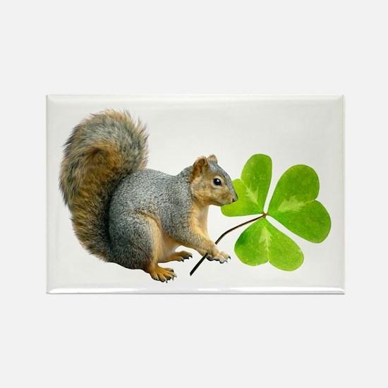 Shamrock Squirrel Rectangle Magnet