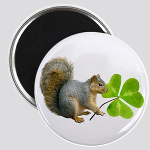 Shamrock Squirrel Magnet