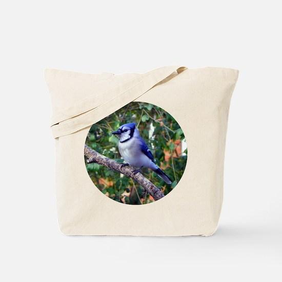 Blue Jay Tote Bag