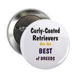 Curly-Coated Retriever Best Button
