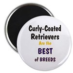 Curly-Coated Retriever Best Magnet