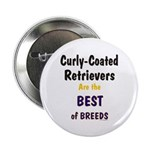 Curly-Coated Retriever Best 2.25
