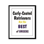Curly-Coated Retriever Best Framed Panel Print