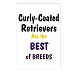 Curly-Coated Retriever Best Postcards (Package of