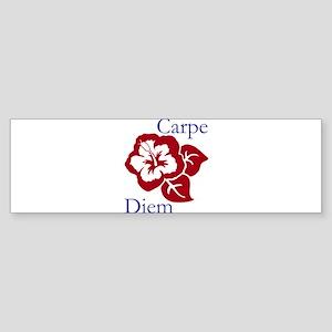 Carpe Diem Sticker (Bumper)