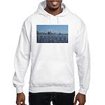Scenic Liverpool (Blue) Hooded Sweatshirt