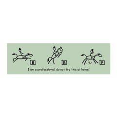 I am a Professional: Dressage 20x6 Wall Peel