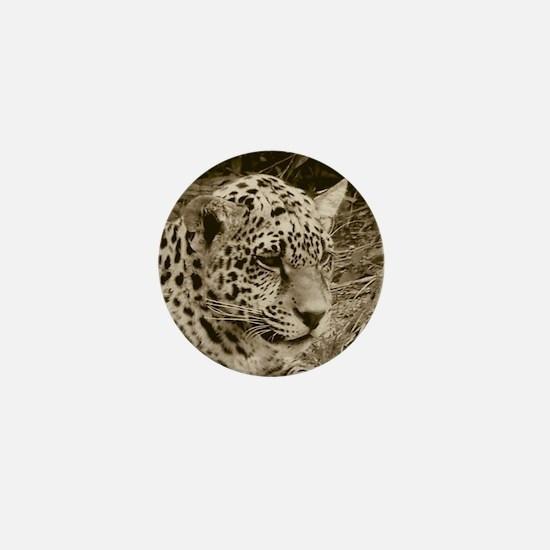 Antique Jaguar Portrait Mini Button