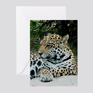 Jaguar Portrait Greeting Cards (Pk of 10)