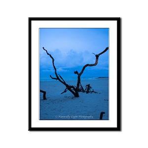 Framed Panel Print Folly Beach trees
