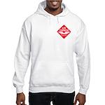 Air Express Hooded Sweatshirt