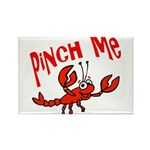 Pinch Me Rectangle Magnet (10 pack)