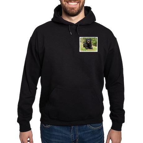Rottweiler 9R047D-049 Hoodie (dark)